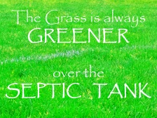 grass-is-always-greener